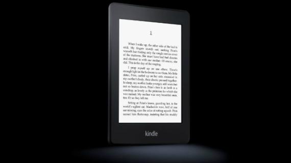 Lançado em 2012, o Paperwhite traz uma tela de 6 polegadas com maior definição, 212 pontos por polegada, e iluminação interna para leitura em locais com pouca luz. Apesar de ser o dispositivos mais avançado do mundo, ele traz apenas 2 GB de memória interna. Desembarcou no mercado brasileiro em março. Formatos de arquivos aceitos: Kindle (AZW), TXT, PDF, MOBI sem proteção, PRC naturalmente; HTML, DOC, DOCX, JPEG, GIF, PNG, BMP através de conversão Preço: de 479 a 699 reais.